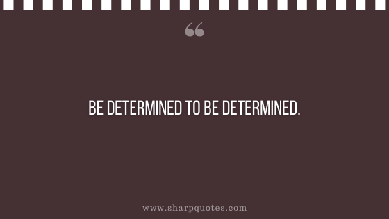 entrepreneur quotes be determined