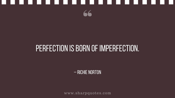 entrepreneur quotes perfection is born