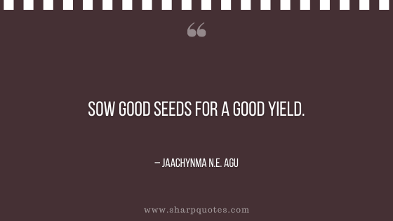 entrepreneur quotes sow good seeds