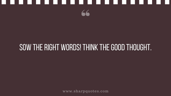 entrepreneur quotes sow the right words