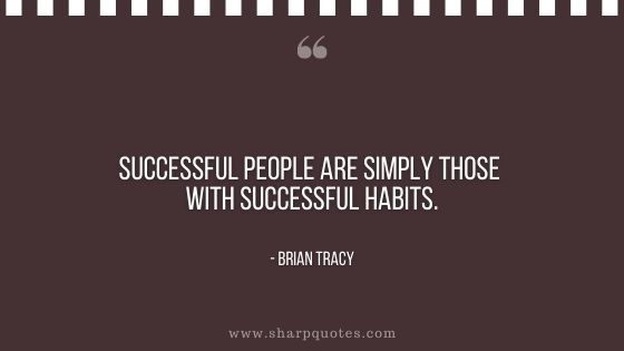 Habits quote successful people are simply those