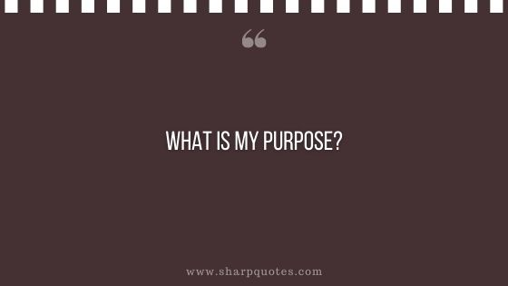question-to-ask-yourself-what-is-my-purpose-sharp-quotes